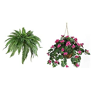 Nearly Natural 6051-S2 48†Boston Fern (Set of 2), 2 Piece,Green & Natural 6608 24in. Bougainvillea Hanging Basket Silk Plant,Beauty,10.25″ x 10.25″ x 17.5″