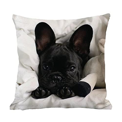 DKISEE Funda de almohada Bulldog Frances cuadrada de lino y algodón, funda de cojín para sofá, silla, 40,6 x 40,6 cm