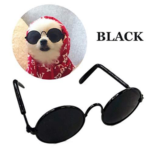 Stock Show Funny Cute Dog Retro Fashion Sunglasses