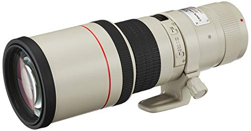 Canon EF 400mm f/5.6L USM Super Telephoto Lens for Canon SLR Cameras