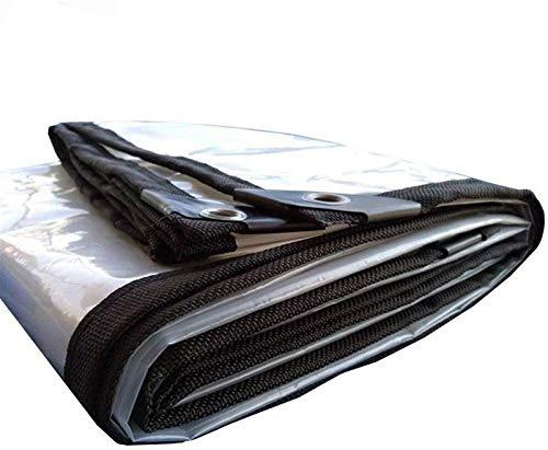 Lonas Impermeables Lona Claro Transparente Espesar Ribete con el Metal plástico del Agujero del Ojo Toldo Clear Tarpaulin (Color : Clear, Size : 3x3m)