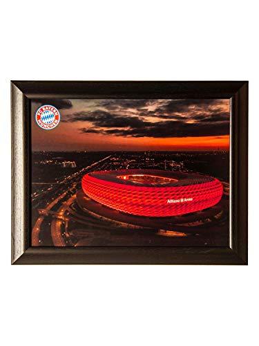 FC Bayern München Bild Allianz Arena 47 x 36 cm