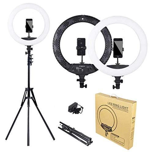 XYSQWZ Anillo de luz LED para selfie, anillo de luz LED de 45,72 cm, con soporte de manguera para teléfono y kit de iluminación para fotografía de moda de retrato y YouTube.