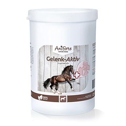 AniForte Teufelskralle Gelenk Aktiv Pulver 500 g für Pferde, Bewegungs-Freude in der Natur, Ohne Zusatzstoffe