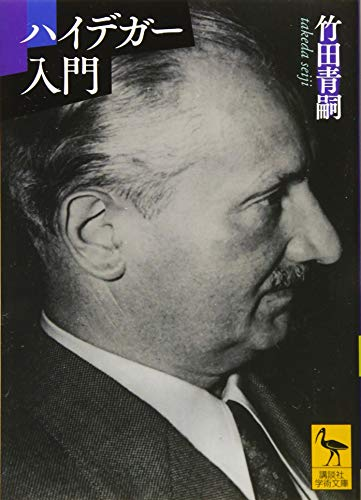 ハイデガー入門 (講談社学術文庫)