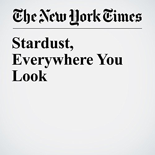 Stardust, Everywhere You Look copertina