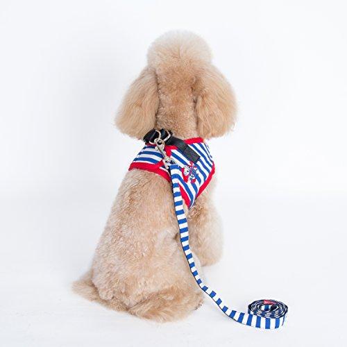 Alfie Pet - Vince Sailor Harness and Leash Set - Color: Blue, Size: XS