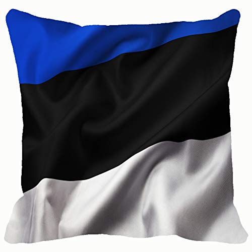 best & Satin Texture Curved Flag Estonia People Estonian People Signs Symbols Estonian Signs Symbols Throw Pillows Covers Cushion Case Pillowcase Home Sofa Couch 18 x 18 Inches Pillowslips