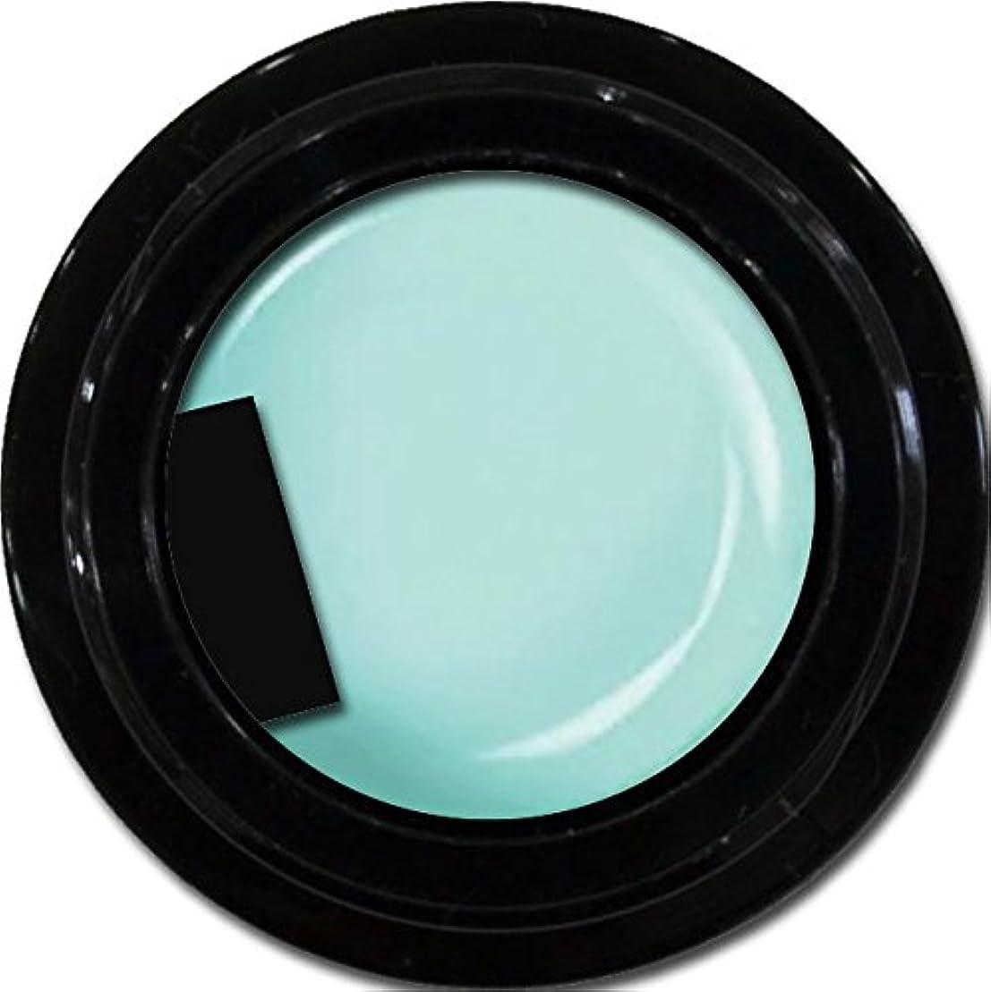 カフェむさぼり食うジャケットカラージェル enchant color gel M704 SianBlue 3g/ マットカラージェル M704 サイアンブルー 3グラム