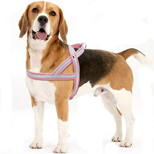 Tablar Arnés para Perros de Cuero para Perros Grandes Reflectante ...
