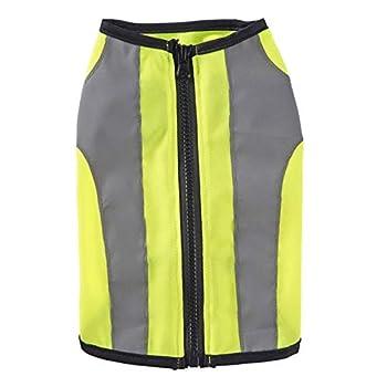 Vest de Pet réfléchissant Visibilité Haute Visibilité Chien Sécurité Vest léger Confortable Coyote Gilet pour Petits Chiens Gardez Les Chiens en sécurité (Color : Green, Size : S)