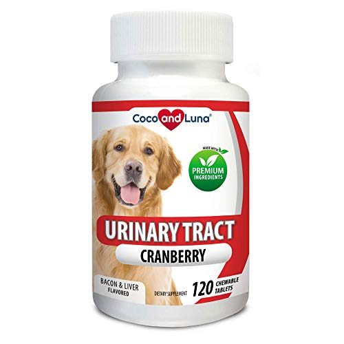 Cranberry for Dogs - Urinary Tract Support, Prevents UTI, Bladder Infections, Bladder Stones and Dog Incontinence - 120 Chew-able Tablets