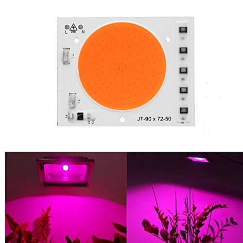 ERCZYO 50 W Full Spectrum Plant Grow Light LED COB Chip para Interior Vegetal Flor AC160-240V ERCZYO