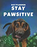 Undated, Blank Hourly Appointment Book For Daily Planning | Day Planner | Funny Bloodhound Cover Photo: Weekly Plan Notebook | Cute Dog Pic Cover Art ... By The Hour | Motivational Planning Journal