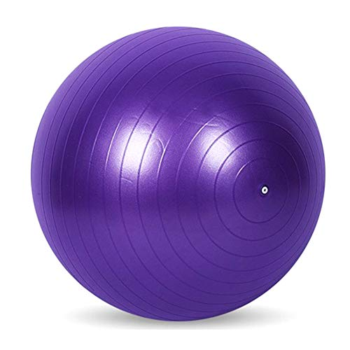didatecar Sport Yoga Bälle Pilates Fitness Ball Fitnessstudio Balance Fitball Übung Pilates Workout Massage Ball mit Pumpe 65cm(lila)