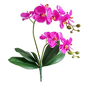 Jasming Elyjhyy Artificial Phaleanopsis Flowers Fake Orchids Leaves Branches for Home Bonsai Garden Decoration