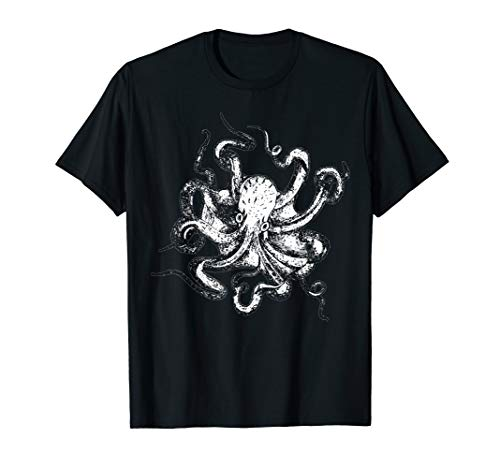 Krake - Tintenfisch Oktopus Cephalopod Polyp Meer Tentakel