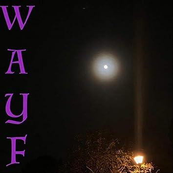 W.A.Y.F.