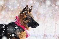 500ピース ジグソーパズル 雪の中のクリスマス犬 スペシャルアートコレクション (52x38cm)