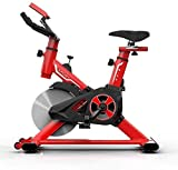 SHDS Bicicleta estática para Interiores, con Volante de inercia de 8 kg, Bicicleta giratoria con manija y Asiento Ajustables, Capacidad máxima de 150 kg, Rojo