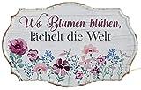 G.H. Vintage Retro Blechschild, Modell, Blumen blühen, Material Metall, Maße 30 x 19 cm, Weiss, rot, ideal für Garten, Terrasse, Bar, Cafe, Cafeteria oder einfach Zuhause.