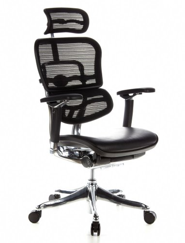 hjh OFFICE Bürostuhl/Chefsessel ERGOHUMAN Plus Sitz Leder/Rücken Netz schwarz