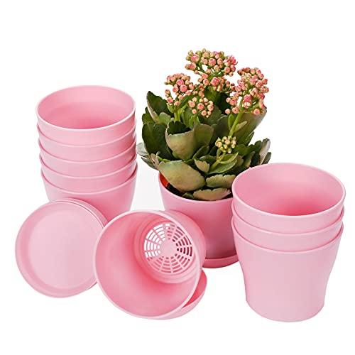 TDHDIKE 10 Pcs Plastic Planters Indoor Flower Plant Pots, Mini Flower Seedlings...