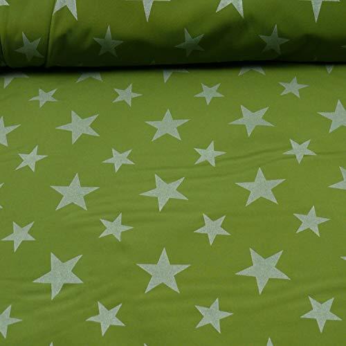 Softshell Magic Reflektion von Glünz Sterne, grün (Meterware ab 25cm x 145cm)