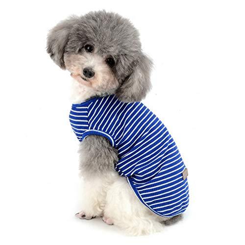 Zunea Camisa para perros pequeños y gatos para mascotas a rayas camiseta de verano Cool Chaleco básico sin mangas de algodón suave Chihuahua ropa para perrito niña niño azul XXL