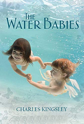 The Water Babies Annotated (English Edition)