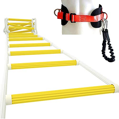 Best ladders for two storey