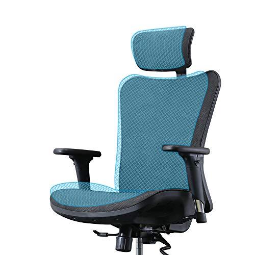 SIHOO Ergonomic Office Chair,...