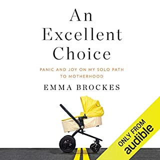 An Excellent Choice cover art