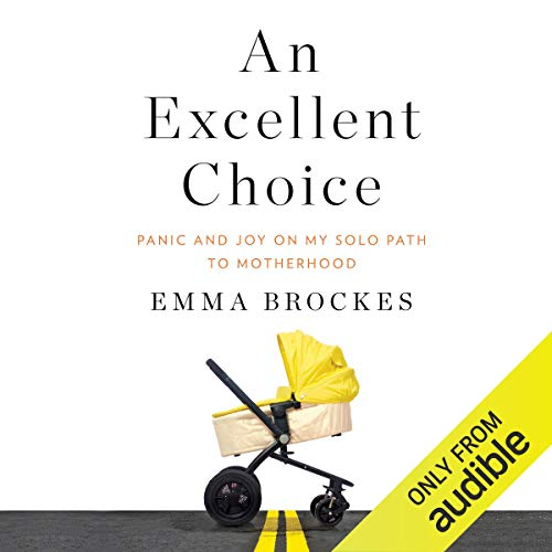 An Excellent Choice audiobook cover art
