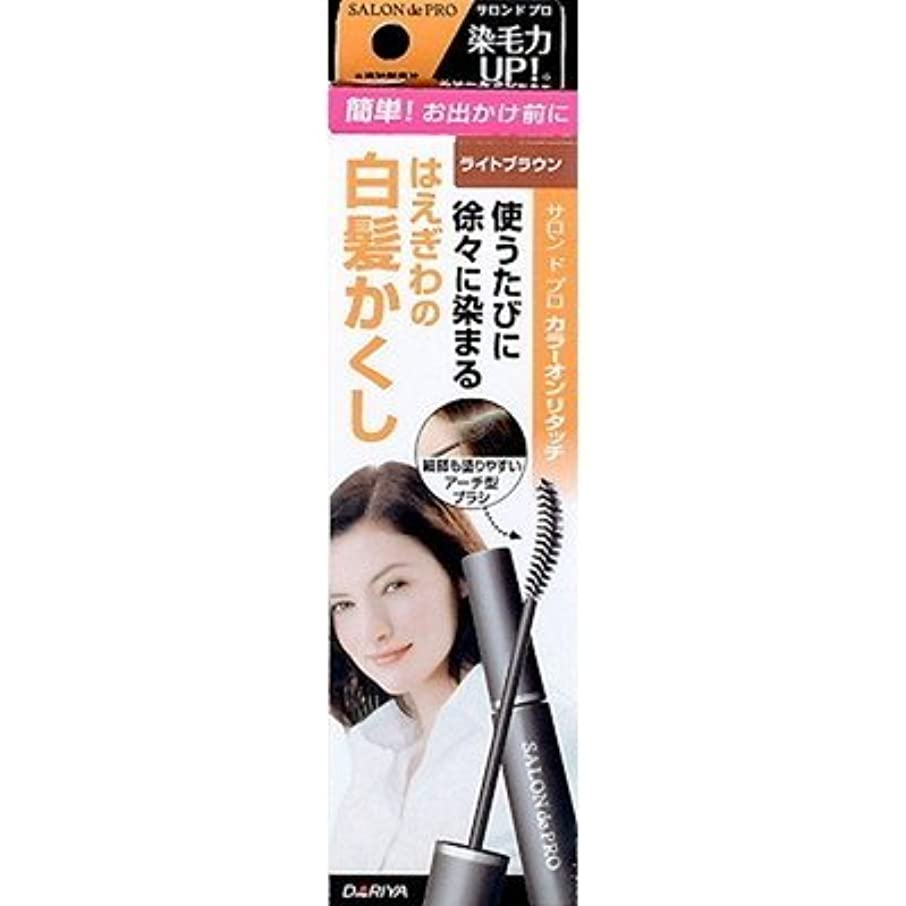 広告決めます極小ダリヤ サロンドプロ カラーオンリタッチEX LB(ライトブラウン) 15ml x9個セット