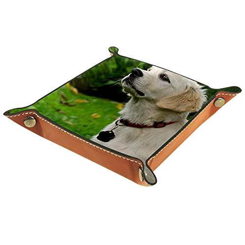 LynnsGraceland Bandeja de Cuero - Organizador - Perrito de Perro Golden Retriever - Práctica Caja de Almacenamiento para Carteras,Relojes,Llaves,Monedas,Teléfonos Celulares y Equipos de Oficina