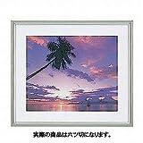 ナカバヤシ アルミ製写真額縁(山型) 六ツ切判 フ-SA-112