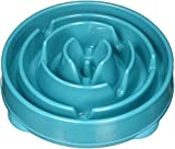 slow feeding dog bowl to prevent bloat