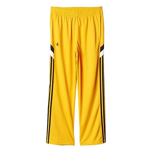 adidas Herren Command Hose Baskettballhose, Cogold, XS