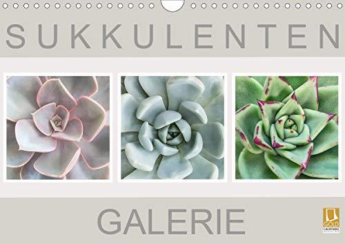 Sukkulenten Galerie (Wandkalender 2021 DIN A4 quer)