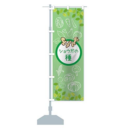 ショウガの種 のぼり旗 サイズ選べます(ショート60x150cm 左チチ)