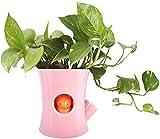 Qiuerte 1 maceta de riego automático, linda ardilla, adecuada para plantas suculentas, pequeñas plantas en maceta, rosa (no contiene plantas)