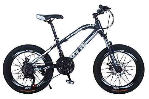 Rainier Mountain Bike
