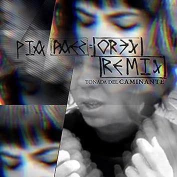 Tonada Del  Caminante Dark Mix (Remix)