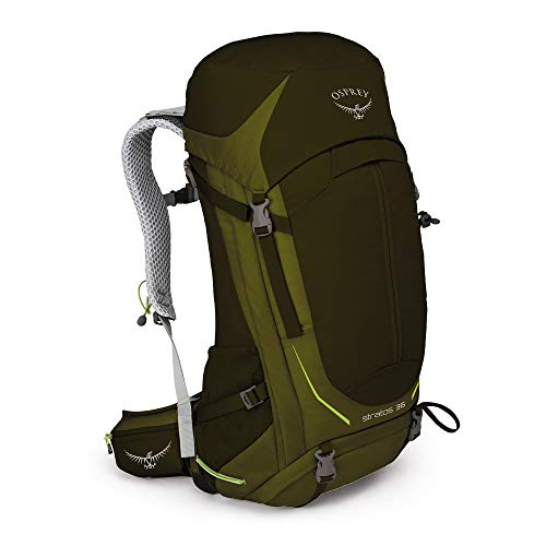 Osprey Stratos 36 Ventilated Hiking Pack - Homme, Vert (Gator Green), M/L