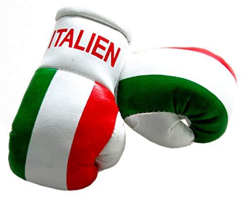 Sportfanshop24 Mini Boxhandschuhe Italien, 1 Paar (2 Stück) Miniboxhandschuhe z. B. für Auto-Innenspiegel