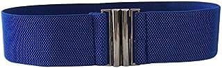 JJXSHLFL Spring and Summer Ladies Skirt Dress Belt Ladies Casual Fashion Wild Belt (Color : Blue)