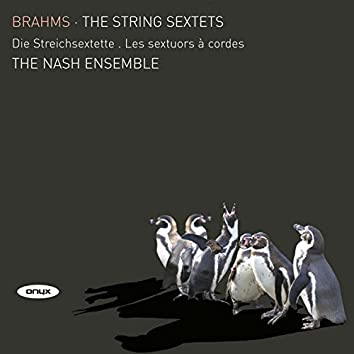Brahms: The String Sextets
