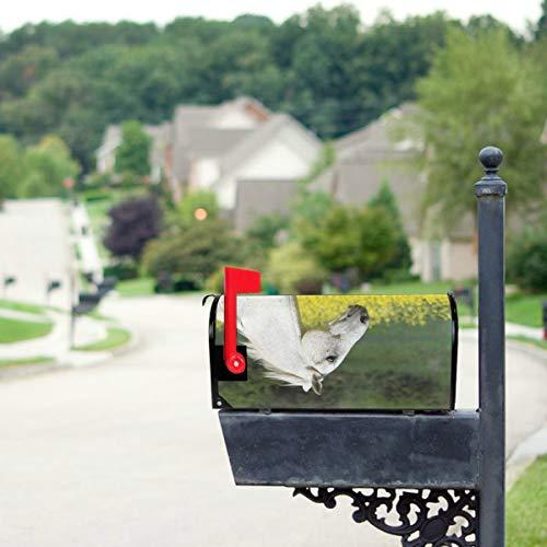 Weißes Pony mit gelben Blumen Standardgröße Ursprünglicher magnetischer Post-Anschreiben-Briefkasten 21 x 18 Zoll Dekorative Briefkasten-Abdeckungen Magnetische Briefkasten-Dekoration Briefkasten-Abd