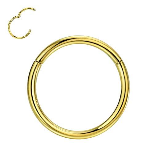 FANSING 1pc G23 Titanium Body Piercing Rings for Nose Ear Lip Septum 20G/18G/16G/14G/12G/10G 5mm/6mm/7mm/8mm/9mm/10mm/11mm/12mm/13mm/14mm/16mm Silver/Gold/Rose Gold/Black/Blue